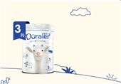朵拉小羊幼儿配方羊奶粉