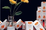 生命阳光转乃乐调制奶粉、DHA藻油凝胶糖果新品上市