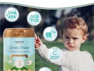 Spring Sheep绵羊婴幼儿奶粉 纯净的好奶粉喝起来是这样的